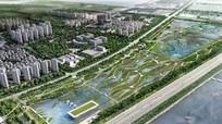 Sân bay cho chim đầu tiên trên thế giới tại Trung Quốc
