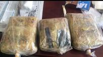 Bắt trùm vận chuyển 16.000 viên ma túy tổng hợp, chống trả cảnh sát