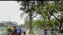 Những tuyến phố có vỉa hè đẹp ở Hà Nội