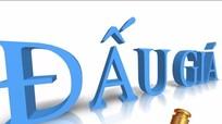 Thông báo bán đấu giá tài sản (lần 8)