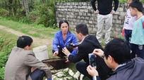 Cá chết hàng loạt sau sự cố vỡ bể chứa chất thải thiếc ở Quỳ Hợp
