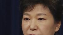 Báo lớn Hàn Quốc chỉ trích phản ứng của bà Park sau khi bị phế truất