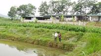 Huyện Anh Sơn đưa trang trại chăn nuôi ra xa khu dân cư