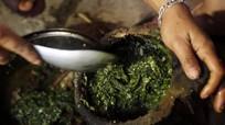 Kỳ dị món canh nấu từ xương động vật thối