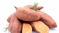 Những món ăn bổ dưỡng, tốt cho sức khỏe từ củ khoai