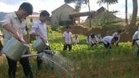 Thầy cô giáo nuôi lợn, trồng rau cải thiện bữa ăn cho học sinh