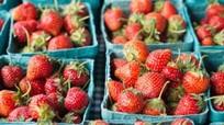 Công bố 12 loại quả chứa nhiều thuốc trừ sâu nhất