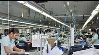 Nghệ An: Kim ngạch xuất khẩu phấn đấu đạt 855 triệu USD