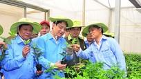 Bí thư Tỉnh ủy thăm cơ sở sản xuất giống chanh leo lớn nhất Châu Á