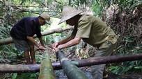 Người dân tự làm đường ống dẫn nước từ núi về bản