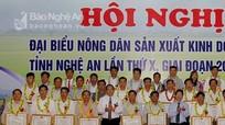 Tỉnh Nghệ An: Khen thưởng 131 nông dân sản xuất, kinh doanh giỏi