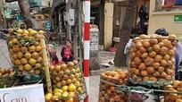 Cam sành Việt Nam có phải là cam Trung Quốc đội lốt?