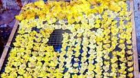 Vì sao hoa chè vàng đắt như vàng?