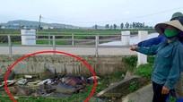 Dân bức xúc vì liên tục phát hiện lợn chết bị vứt trộm