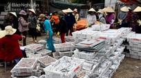Chuyến biển đầu tiên của tàu 67 ở Nghệ An trúng đậm cá hố xuất khẩu