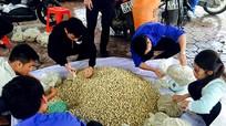 Nghệ An: Những shipper 'giải cứu' hành tăm