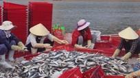 Ngư dân Quỳnh Lưu đóng tàu 'khủng' vươn khơi