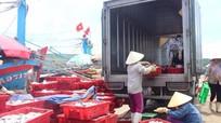 Biển khơi đang làm giàu cho ngư dân miền Trung