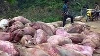 14 cơ sở giết mổ lợn chết thành đặc sản