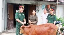 Bộ Chỉ huy Quân sự tỉnh trao tặng bò cho hộ nghèo ở Quỳnh Lưu
