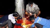 Nghề đánh cá đêm trên sông Lam