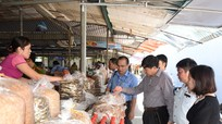 Cửa Lò sẵn sàng cho một mùa du lịch an toàn vệ sinh thực phẩm