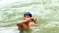 Lặn xuống suối 'đánh thuốc mê' bắt cá lăng ở miền tây Nghệ An