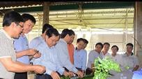Trưởng đại diện JICA Việt Nam khảo sát tại Nghệ An