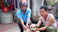 Anh Sơn: Tiêm vắc xin phòng dại cho trên 35.000 con chó
