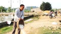Quỳnh Lưu: Dịch lở mồm, long móng đã được khống chế