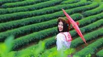 Người đẹp Đào Thị Hà xinh tươi nhí nhảnh giữa đảo chè Nghệ An