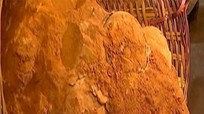 Phát hiện trứng khủng long 70 triệu năm ở Trung Quốc