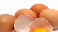 Bảo quản trứng gia cầm không đúng cách vi khuẩn sẽ xâm nhập