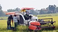 Yên Thành: Không để xảy ra tình trạng 'bảo kê', 'cò' máy gặt
