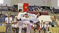 Trao 84 bộ huy chương tại giải Vô địch Karatedo tỉnh Nghệ An năm 2017