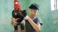 Thanh niên 9X về quê nuôi gà Đông Tảo