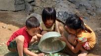 Trẻ em vùng cao bắt bướm làm món ăn