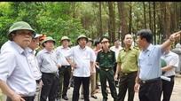 Bảo vệ an toàn tuyệt đối các khu rừng gắn với khu di tích lịch sử