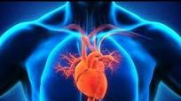 Thủ phạm gây nhồi máu cơ tim