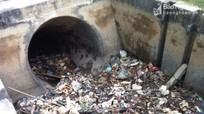Nghệ An: Báo động ô nhiễm nhiều kênh mương do rác, chất thải