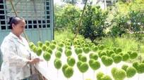 Trồng cỏ 'may mắn' thu hàng chục triệu đồng mỗi tháng