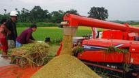 Dàn máy khủng trên đồng ruộng xứ Nghệ