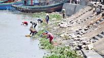 Vòi nước sạch bỏ không, ngư dân rửa cá bằng nước sông Lạch Vạn
