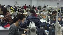 Thành phố Vinh: Thu ngân sách tăng cao