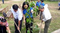 Con Cuông: Trên 200 đoàn viên thanh niên ra quân chiến dịch hè tình nguyện