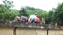 Ám ảnh những 'bẫy' người ở khu tái định cư Ngọc Lâm