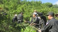 650 học viên Trường Trung cấp Cảnh sát Vũ trang phát đường băng cản lửa