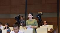 ĐBQH Nghệ An: Giao Ngân hàng Nhà nước quy định nợ xấu là chưa thỏa đáng