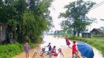 Miền núi Nghệ An tiếp tục có mưa 'vàng'
