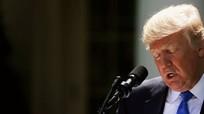 Thêm tòa phúc thẩm chặn sắc lệnh nhập cảnh của Trump